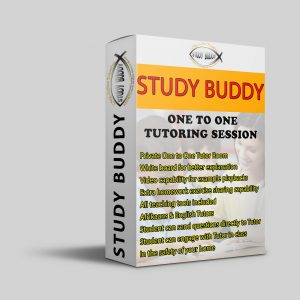 SINGLE ONE-ON-ONE TUTOR LESSON